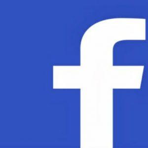 10 FB PVA Accounts